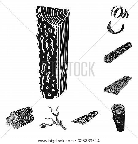 Vector Illustration Of Hardwood And Construction Icon. Set Of Hardwood And Wood Vector Icon For Stoc