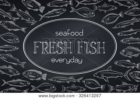 Vector Layout Fish. Design Chalk Seafood With Bream, Mackerel, Tunny Or Sterlet, Codfish And Halibut
