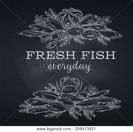 Vector Banners Hand Drawn Fish. Blackboard Seafood With Bream, Mackerel, Tunny Or Sterlet, Codfish A