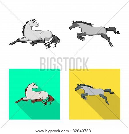 Vector Design Of Breed And Equestrian Sign. Collection Of Breed And Mare Vector Icon For Stock.