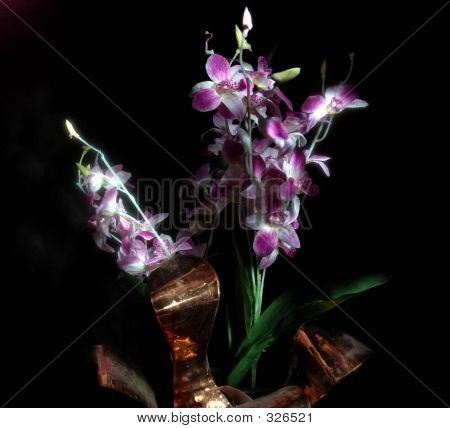 Lightpaintflowers