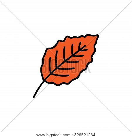 Leaf Vector Illustration. Hand Drawn Cute Autumn Red Beech Leaf. Isolated Cartoon Graphic Icon.