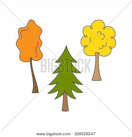 Tree Vector Illustration Set. Three Autumn Trees, Green Conifer, Two Broad-leaved With Yellow And Or