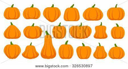 Pumpkin Flat Icons Set. Sign Kit Of Halloween. Thanksgiving Pictogram Collection Farm Harvest, Close
