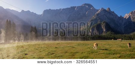 Meadow Under The Alpine Peaks During A Sunny, Foggy Morning
