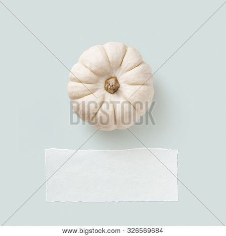 minimalist pastel colored autumn / fall / thanksgiving concept or greeting card with single white pumpkin on a blue background, piece of blank vellum as copyspace for your text, flat lay / top view