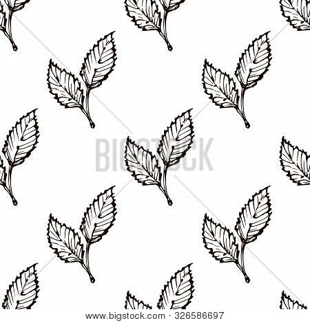 Seamless Pattern With Hand Drawn Beech Leaves