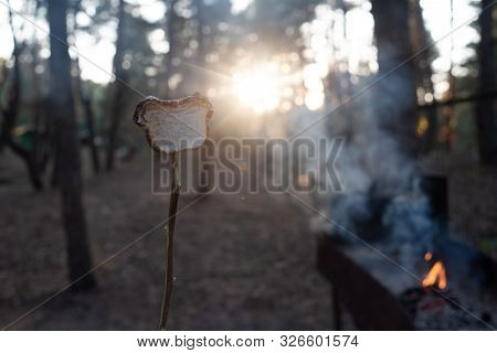 Marsh Mellow At The Stake. Marsh Mellows On Wooden Skewers Toasting Over Wood Flames. Marshmallows I