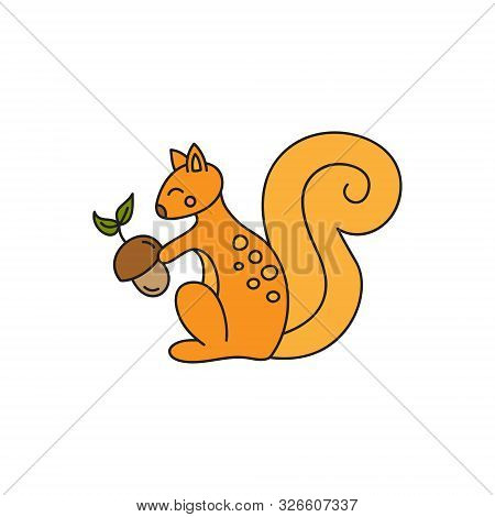 Squirrel Vector Illustration. Cute Hand Drawn Outlined Ginger Squirrel Sitting, Holding Acorn. Fores