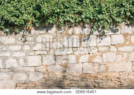A Fragment Of A Traditional Fence Made Of Stone Blocks. A Climbing Plant Grows On Top Of The Fence.