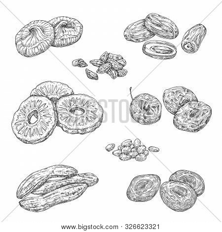Dried Fruits And Candied Berries Isolated Sketches. Vector Monochrome Pineapple And Banana, Damson F