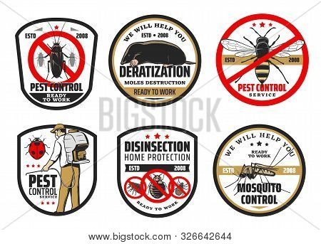 Pest And Mosquito Control, Deratization And Disinsection. Vector Exterminator In Uniform With Cold F