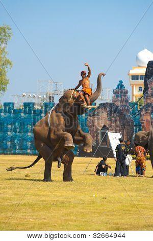 Elephant Hind Legs Raising Trainer