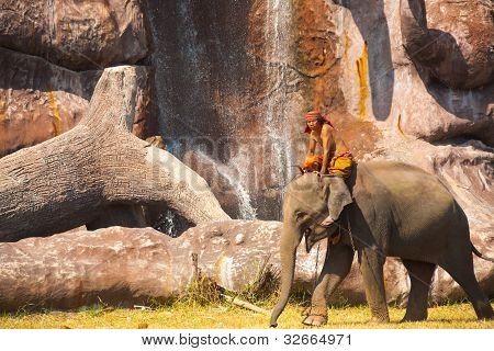 Elephant Walking Scenic Waterfall Cliff