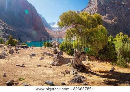 Mountain Landscape With Archa Tree On Shore Of Blue Lake Greater Allo In Fann Mountains On Sunny Bri