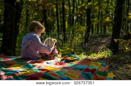 Boy Cute Child Play With Teddy Bear Toy Forest Background. Child Took Favorite Toy To Nature. Picnic
