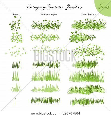 Set Of Summer Vector Grass Ecology Brushes - Silhouettes Of Summer Grass, Flowers, Different Earth G