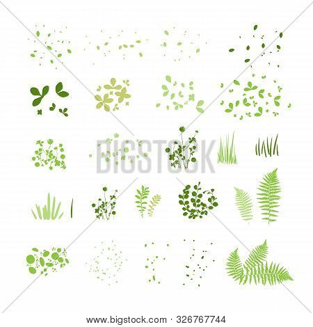 Set Of Silhouettes Of Summer Grass, Leaves, Foliage Of Trees, Different Greenery Types Isolated On W