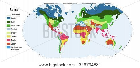 Biomes. Terrestrial Ecosystem Is A Community Of Living Organisms. Biotope: Montane, Desert, Tropics,