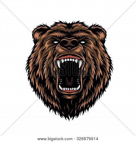 Ferocious Aggressive Bear Head Colorful Concept In Vintage Style Isolated Vector Illustration