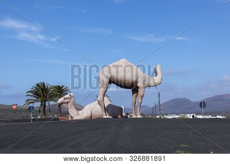 Yaiza, Spain - Jan 22, 2017: Statue Of Camels At A Roundabout Near Yaiza, Lanzarote, Spain. Camels A