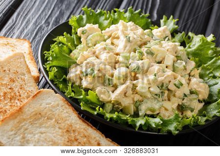 Fresh Chicken Salad With Celery, Eggs With Mayonnaise Dressing Closeup On A Plate. Horizontal