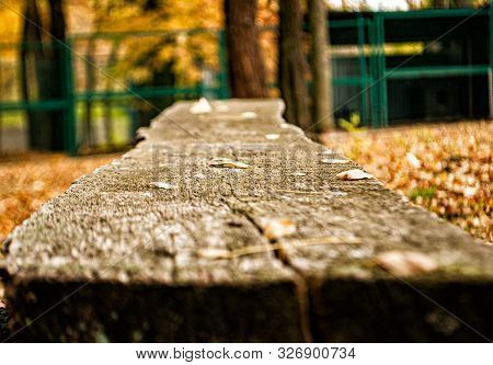 Old Decrepit Bench In A City Park In The Fall Afternoon
