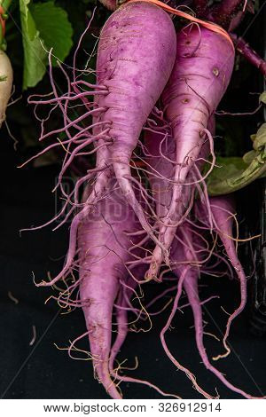 Nutrient Rich Violet Colored Parsnips Are Seen Closeup, On A Market Stall During A Fair For Local Gr