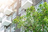 Green living public space plant tree for cooling and fresh air good ozone around condominium poster