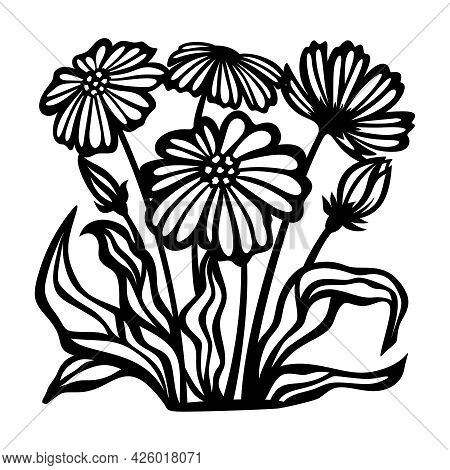 Silhouettes Of Flowers Drawn With Black Lines. Chamomile Buds, Petals, Leaves, Stems Isolated On Whi