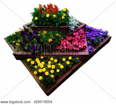 Flowerbed Is A Multi-level Bed With Wooden Fences With Many Beautiful Annual Flowers Of Various Colo