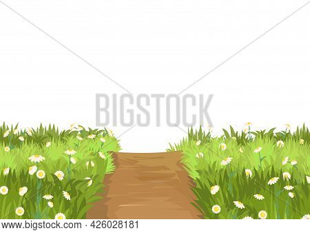 Road. Meadow With Wildflowers. Illustration. Grass Close-up. Green Landscape. Isolated. Cartoon Styl