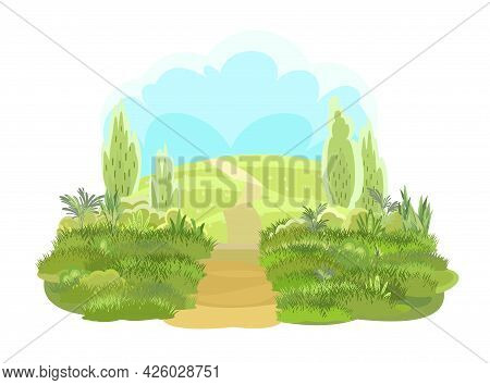 Rural Road To Green Glade In Horizon. Summer Meadow. Trail. Juicy Grass Close Up. Grassland. Country