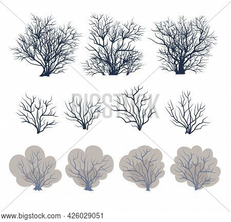A Set Of Bare Trees. Crown With Branches. Bushes Covered With Snow Close-up. Flat Cartoon Style. Win