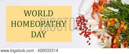 Banner With Bioadditive Tablets And Medicinal Plants With The Inscription World Homeopathy Day