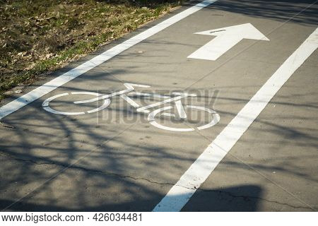 Bicycle Path Symbol On Asphalt. Cycle Path In A Spring Park