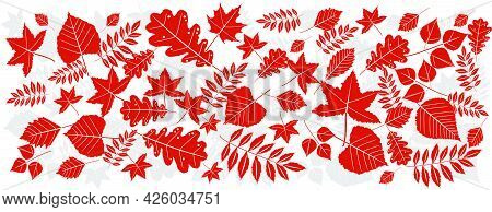 Orange Leaves With A White Outline And A Gray Shadow On A White Background.