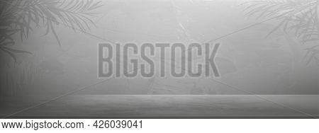 Grey Cement With Palm Leaves On Wall Room Background, Illustration 3d Backdrop Of Gray Concrete Floo