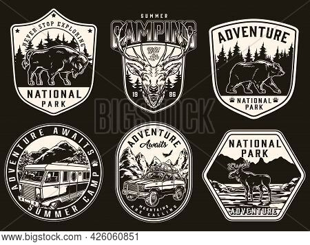 Camping And National Park Vintage Prints With Walking Bear Bison Moose Deer Head Motorhome And Trave