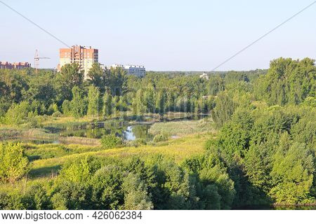 Overgrown Pond In The City, A Residential Building And Green Thickets, Morning, Moscow Region, July,