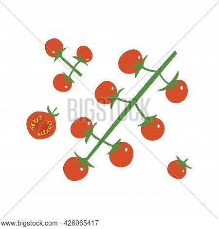 Cherry Tomato Set. Red Fresh Tomatoes: Branch, Half And Slice.
