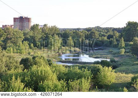 Overgrown Pond In The City, A Residential Building And Green Thickets, Moscow Region, July 2021