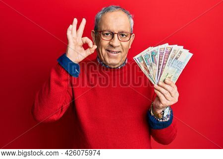 Handsome senior man with grey hair holding egyptian pounds banknotes doing ok sign with fingers, smiling friendly gesturing excellent symbol