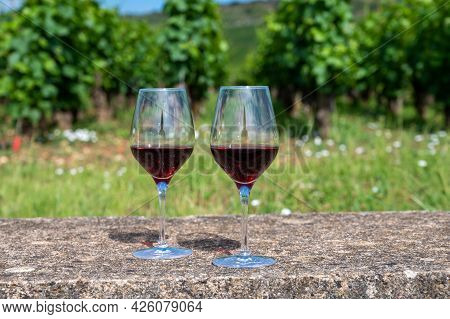 Tasting Of Burgundy Red Wine From Grand Cru Pinot Noir  Vineyards, Two Glasses Of Wine And View On G