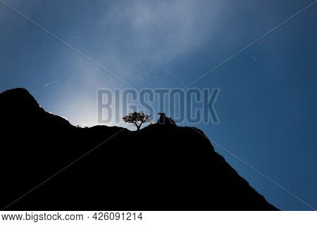 A Sandstone Cliff And Small Tree Silhouetted By The Sun With Rising Steam And A Strange Phenomenon O