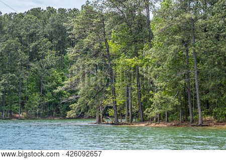 Shoreline Underwater At The Lake With The Water Line Up To The Trees From Abundant Rainfall In The S