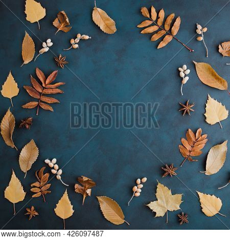 Autumn Or Winter Composition Of Dried Leaves