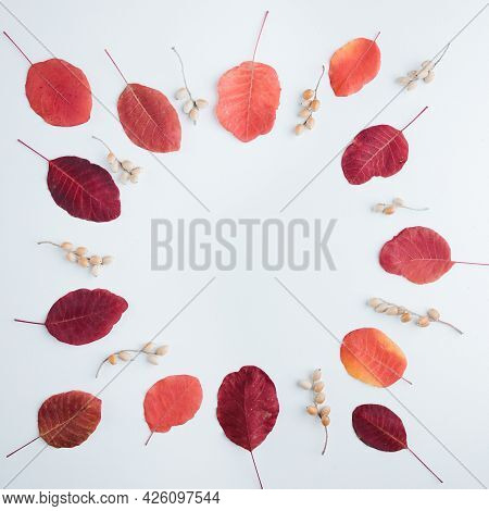 Wreath Of Dried Red Leaves On White Background