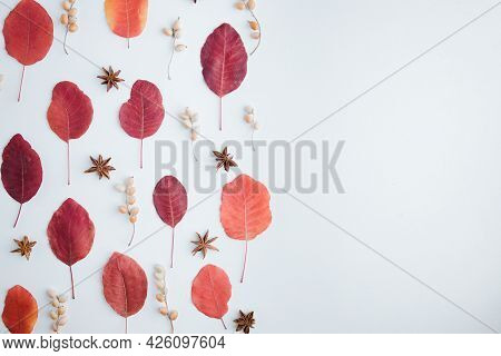 Autumn Background, Pattern Of Red Dried Leaves