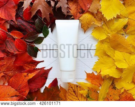 White Squeeze Bottle Cosmetic Tube And Round Frame Of Bright Autumn Or Fall Leaves On White Wooden T